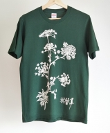 オリジナルTシャツ 薬草 大和当帰 デザイン アイビーグリーン L/ぎゃらりー山百 奈良県 宇陀市