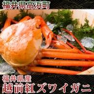 福井県産 越前紅ズワイガニ