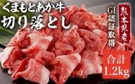 熊本県産 GI 認証取得 くまもと あか牛 切り落とし 合計1kg【配送不可:離島】