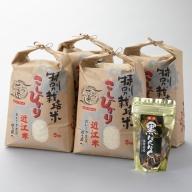 【C-548】よこいファーム 特別栽培米コシヒカリ20kgコース(黒にんにく付)(頒布会6カ月)[高島屋選定品]
