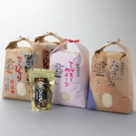 【C-551】よこいファーム 特別栽培米3種食べ比べコース(黒にんにく付)(頒布会12カ月)[高島屋選定品]