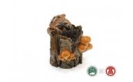 カエルフィギュア「ナメコとヒキガエルの樹」(大山ブランド会)高島屋 タカシマヤ 0393.75-v2