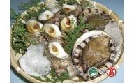 あわび・さざえ海の貝セット(大山ブランド会)高島屋 タカシマヤ 0305.30-T2