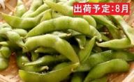 8月・盆明け 五城目産 産直枝豆1kg