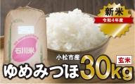 028005. 【令和3年産・新米予約】ゆめみづほ 玄米30kg
