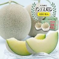 SA0800 酒田の果物専門店厳選 特大 庄内砂丘アンデスメロン 約4kg(2玉入)