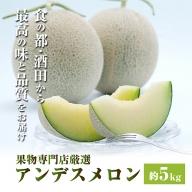 SB0192 酒田の果物専門店厳選 庄内砂丘アンデスメロン 約5kg(4~5玉入)