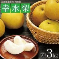SA0801 酒田の果物専門店厳選 刈屋産 幸水梨 約3kg(9玉入)