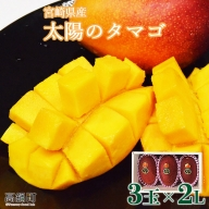 <宮崎県 完熟マンゴー 太陽のタマゴ 3玉×2L(合計 約1kg)>