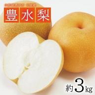 SA0802 酒田の果物専門店厳選 刈屋産 豊水梨 約3kg(8~9玉入)