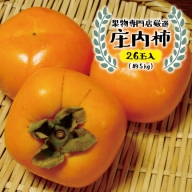 SB0197 酒田の果物専門店厳選 庄内柿 約5kg(26玉入)