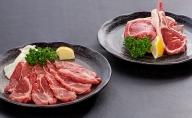 塩で食べる極上ラム肉セット 肉 ラム ジンギスカン