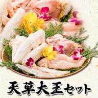 熊本県産 天草大王セット もも肉 むね肉 ささみ 大手羽 パック 御船屋 熊本県御船町《30日以内に順次出荷(土日祝除く)》鶏肉