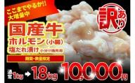 010B545 【GW限定増量】国産牛ホルモン(小腸)塩だれ漬け 小分け焼肉用 1.8kg(+800g)訳あり 数量・期間限定