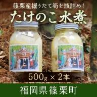 BZ009 篠栗産 たけのこ 水煮 500g×2本 たけのこ タケノコ 筍 4月下旬より発送予定