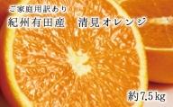 【ご家庭用訳アリ】紀州有田産清見オレンジ 7.5kg ※2022年3月中旬~2022年4月下旬頃に順次発送予定(お届け日指定不可)