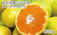 紀州和歌山有田産ゆら早生みかん10kg ※2021年10月中旬~2021年10月下旬頃に順次発送予定(お届け日指定不可)