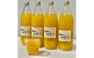 【果汁100%】無添加!贅沢絞りの有田みかんストレートジュース1000ml ×4本セット