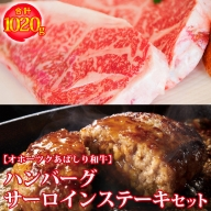 ハンバーグ・サーロインステーキセット1020g <網走産>【オホーツクあばしり和牛】