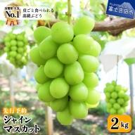 【フルーツ王国】 山梨県産 シャインマスカット 約2kg(2~3房)