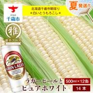 夏限定!!麒麟ラガービール500ml 12缶&白色とうもろこしピュアホワイト14本セット【予約開始】
