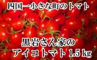 【四国一小さなまちのトマト】≪令和3年5月発送≫ 黒岩さん家のアイコトマト1.5kg