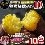 先行受付!【10月お届け】島津甘藷 熟成紅はるか 10kg(2L~2S)_AA-A701-10