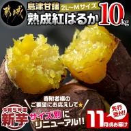 先行受付!【11月お届け】島津甘藷 熟成紅はるか 10kg(2L~2S)_AA-A701-11