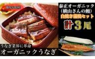 泰正オーガニック(横山さんの鰻)~生産者直送~白焼き蒲焼きセット(計3尾)