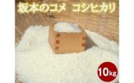 No.046 坂本のコメ コシヒカリ 10kg 【令和2年産】 / お米 精米 こしひかり 減農薬 減化学肥料米 群馬県