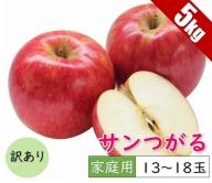 【訳あり】 9月 りんご 5kg程度 サンつがる 【青森りんご・クール便】