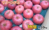 9月 りんご 10kg程度 サンつがる 特選 太田農園【青森りんご・クール便】