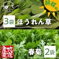 《期間限定》飛騨古川 朝採り 葉物3点セット ほうれん草・小松菜・春菊 計920g[Q680]