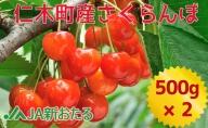 【JA新おたるの生産者厳選】7月旬のさくらんぼ1kg(北海道仁木町産)