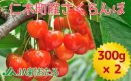 【JA新おたるの生産者厳選】7月旬のさくらんぼ600g(北海道仁木町産)