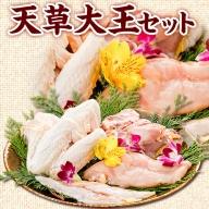 熊本県産 天草大王セット もも肉 むね肉 ささみ 大手羽 パック 長洲町 熊本県《30日以内に順次出荷(土日祝除く)》