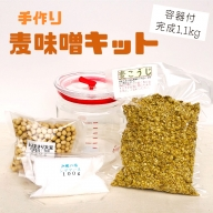 【ふるさと納税】大阪屋こうじ店 手作り麦味噌キット(容器付)