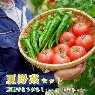 【ふるさと納税】夏野菜セット 万願寺とうがらし1kg トマト2kg 化粧箱入