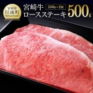 宮崎牛ロースステーキ 250g×2枚