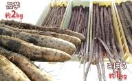 長野市松代産 TAKANO農園 ごぼう(約1kg)と長いも(約2kg)計3kg