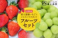 【数量限定・フルーツセット】富士夏媛いちご&シャインマスカット