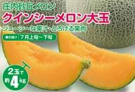 SA0821 大玉クインシーメロン 約4kg(赤肉2玉入/つる付き)