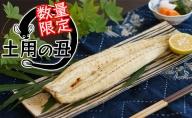 【土用の丑・数量限定】静岡県浜名湖産 鰻の白焼き 約125g×2本セット【配送不可:離島】