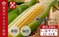 【Z8-020】農家直送 甘~い朝採りスイートコーン約4.5kg レシピ付き