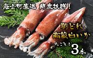 【便利な個包装】高級朝どれ白いか丸ごと3本セット【ぜひお刺身で!】