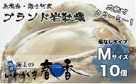 【殻剥き不要】ブランド岩牡蠣「春香」殻なしタイプ Mサイズ×10個(1.6kg~2.2kg)