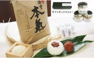 海士の本氣米(10kg)梅むすびセット