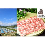 JAPAN X 豚肩ロース2mmスライス/計2kg