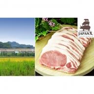 JAPAN X 豚ロースステーキ15枚/計1.5kg