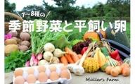 季節の野菜詰め合わせ(7~8種)と平飼い卵セット!農薬不使用だから安心安全!